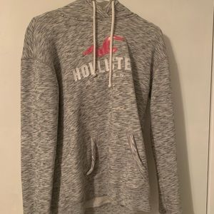 Hollister Sweatshirt With Bird Logo And Brand Name